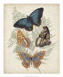 Butterflies & Ferns V Art Print