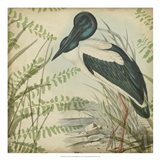 Heron & Ferns I Art Print
