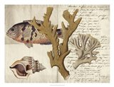 Sealife Journal I Art Print