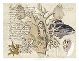 Sealife Journal IV Art Print