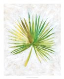 Ocean Side Palms  II Art Print
