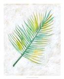 Ocean Side Palms  IV Art Print
