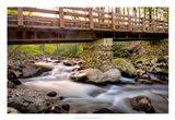 Bridge and Cascade III Art Print