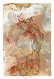 Coral Lace I Art Print