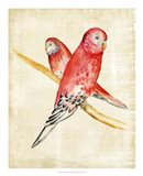 Fanciful Birds I Art Print