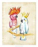 Fanciful Birds IV Art Print