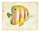 Aquarium Fish III Art Print