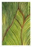 Tropical Crop II Art Print