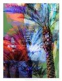 Desert Palm Abstract Art Print
