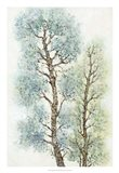 Tranquil Tree Tops I Art Print