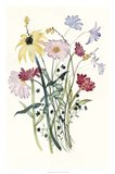 Wildflower Watercolor I Art Print