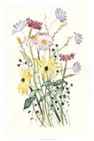 Wildflower Watercolor II Art Print