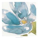 Flower Splash I Art Print