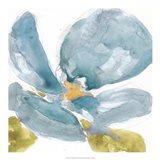 Flower Splash II Art Print