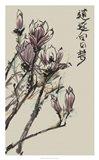 Mandarin Magnolia II Art Print