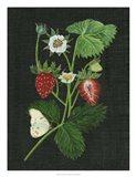 Strawberry Fields I Art Print