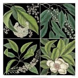 Graphic Botanical Grid I Art Print