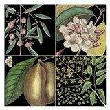 Graphic Botanical Grid II Art Print