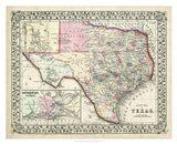 Johnson's Map of Texas Art Print