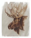Western American Animal Study II Art Print