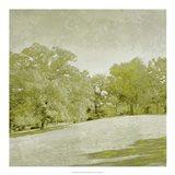 Beryl Landscape  II Art Print