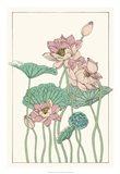Botanical Gloriosa Lotus I Art Print