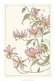 Botanical Gloriosa Lily I Art Print