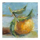 Impressionist Fruit Study III Art Print