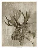 Sepia Moose Art Print