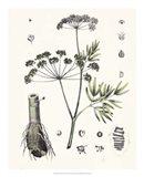 Berge Botanicals I Art Print