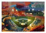Sox Stadium, Chicago Art Print