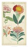 Spring Blooms III Art Print