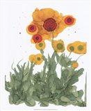 Poppy Whimsy I Art Print