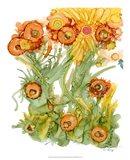 Sunlit Poppies III Art Print