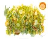 Sunlit Poppies IV Art Print