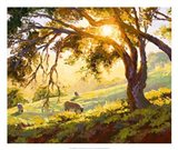 Restful Radiance Art Print