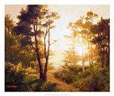 Gilded Pathway Art Print