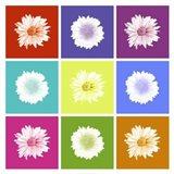 Vivid Bouquet Art Print