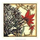 Coral Tapestry III Art Print