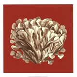 Coral on Red III Art Print