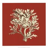 Coral on Red IV Art Print