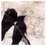 What Crows Reveal II Art Print