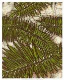 Batik Frond I Art Print