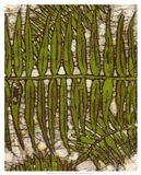 Batik Frond III Art Print