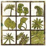 Verde 9-Patch Art Print