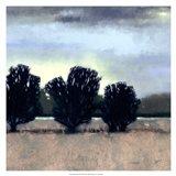 Moonlit Field II Art Print