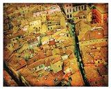 Bird's-eye Italy III Art Print
