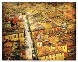 Bird's-eye Italy IV Art Print