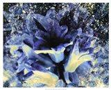 Silverbell I Art Print