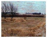 Fields I Art Print